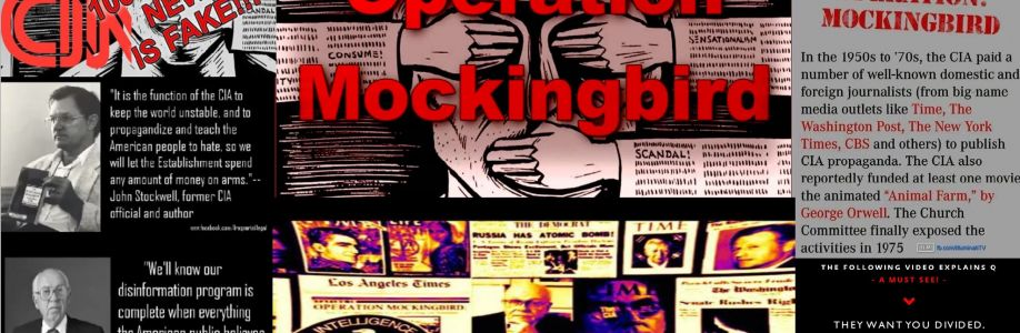 Operation Mockingbird Cover Image